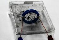 コイルの磁場